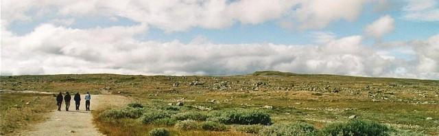 Wandern im Hardangervidda-Nationalpark