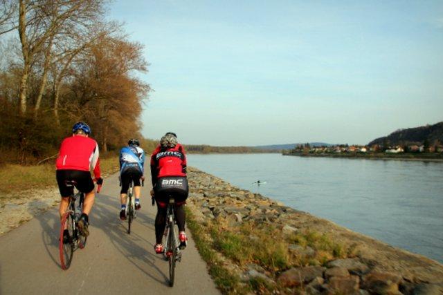 Diese Rennradgruppe überholte uns auf dem Donauradweg, nur um anschließend genau unsere Geschwindigkeit weiter zu fahren. Dafür mussten wir uns dann über 30 km lang ihre Hintern ansehen.