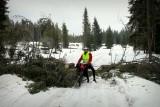 Total verschneite Straße und umgestürzte Bäume.