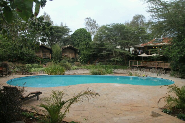 Wildebeest Eco Camp in Nairobi