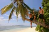 Survival auf Amparo Island
