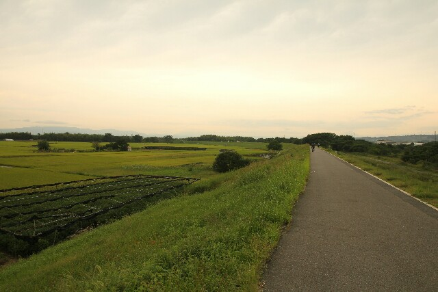 Flussradweg nach Kyoto
